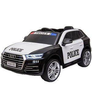 Xe Hoi Dien Audi Q5 (9)